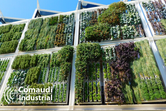 jardines verticales protegen ruido